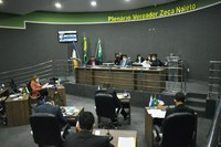 Sessão desta sexta-feira (19), vereadores apresentam propostas e comissões são instituídas na Câmara Municipal de Guaraí